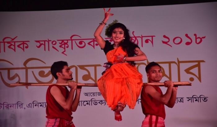 সিকৃবিতে 'ডিভিএম গ্ল্যামার' সাংস্কৃতিক অনুষ্ঠান