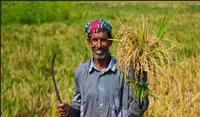প্রিয় বাংলাদেশে আজ কৃষকরা সবচেয়ে নিগৃহীত ও বঞ্চিত