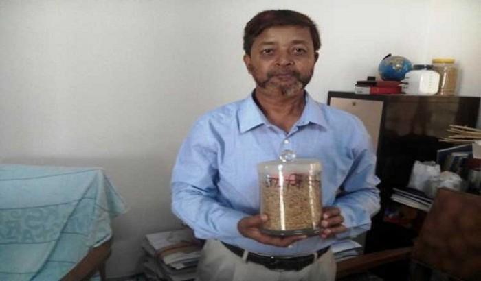 রাবি প্রফেসরের নতুন ধান, পাওয়া যাবে চিকন মিনিকেট